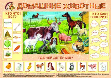 Корзина для игрушек Играем вместе Winx XDP-1797-R